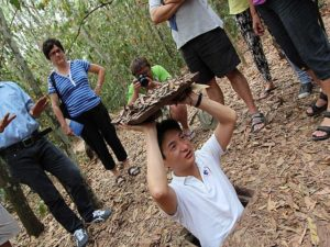Learn about the Vietnam War in Cu Chi Tunnel.